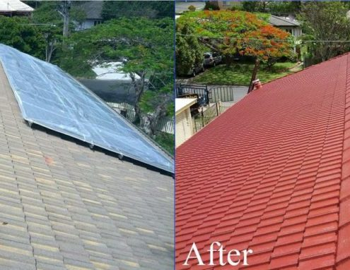 Roof Coatings Amp Painting Roofix Roof Repairs Gauteng
